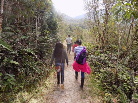Ulcumano Ecolodge: Conociendo el bosque