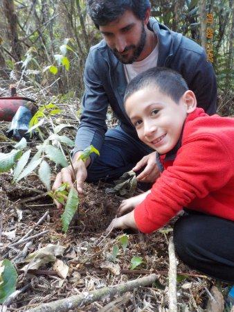 Ulcumano Ecolodge: Plantando un árbol de Nogal con Eduardo