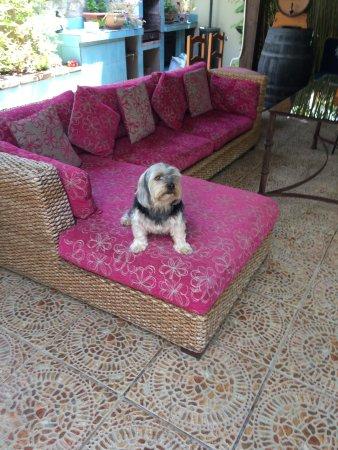 L'escala Hotel: Jethro living it up