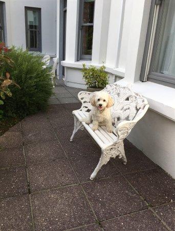 Ballylickey, Ireland: Seaview House Hotel