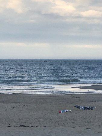 Hampton State Beach: photo0.jpg