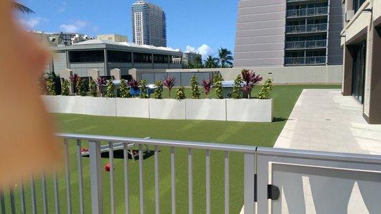 Holiday Inn Express Waikiki Bean Bag Toss Ping Pong