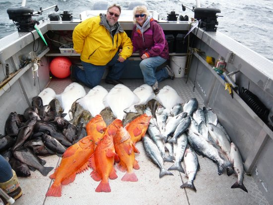 Driftwood Inn & Homer Seaside Lodges : Caught out limit by noon!