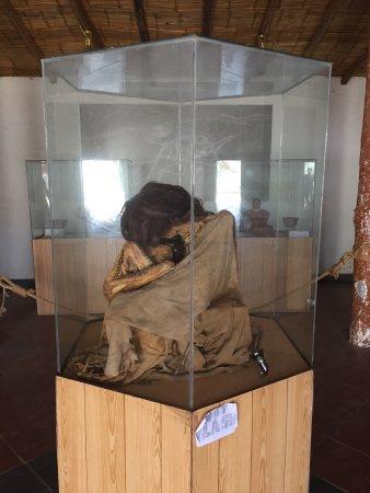 Casa-Museo Marí Reiche: photo4.jpg