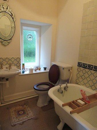 Llanwrda, UK: Bee room bathroom