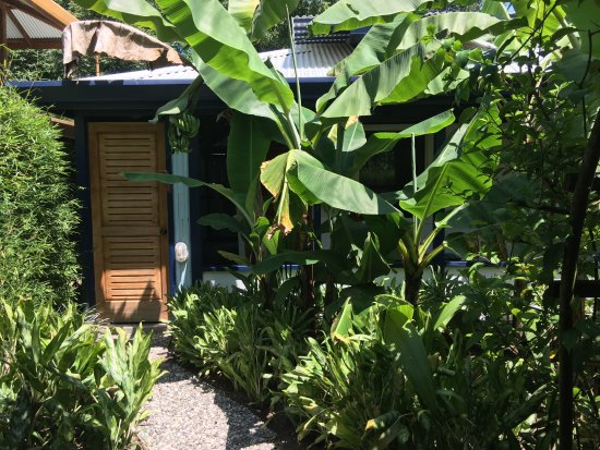 Blue Osa Yoga Retreat and Spa: The entrance to my room/bungalow