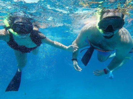 MUSA Cancún (Museo Subacuático de Arte): Snorkeling