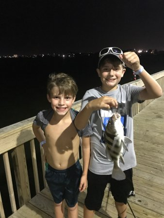 Galveston Island, TX: My son caught his first black drum at Jamail Bay Park