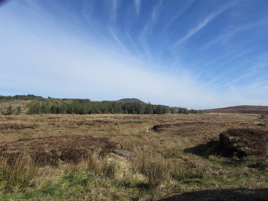 Belleek, UK: Discover the wilderness on a Turf Bog Tour