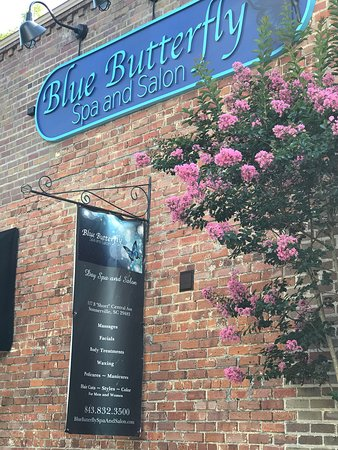 Summerville, SC: Blue Butterfly