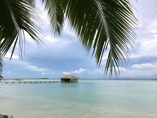 Al Natural Resort: photo0.jpg
