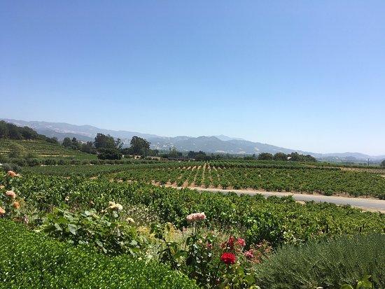Geyserville, Californië: photo3.jpg