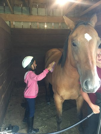 Hartwick, NY: Sammie had the greatest time at Cooperstown Equestrian Park!  She got to do what she loves while