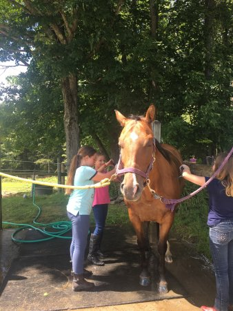 Hartwick, Estado de Nueva York: Sammie had the greatest time at Cooperstown Equestrian Park!  She got to do what she loves while