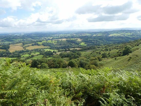 Little Trewern Bed and Breakfast: view from Black Mountains nearby