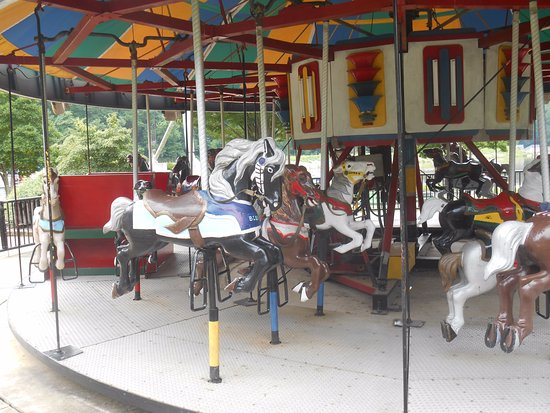 Some horses on the carousel at Lake Accotink Park