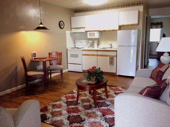 แคนนาโพลิส, นอร์ทแคโรไลนา: Living room and Kitchenette.