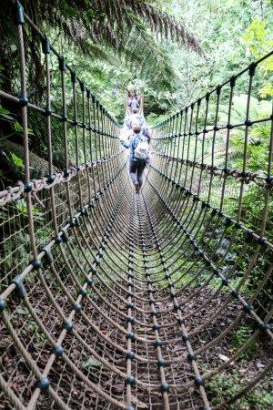 St Austell, UK: Burmese rope bridge