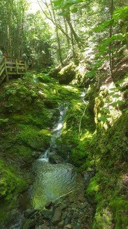 Alma, Canada: 20170809_124811_large.jpg