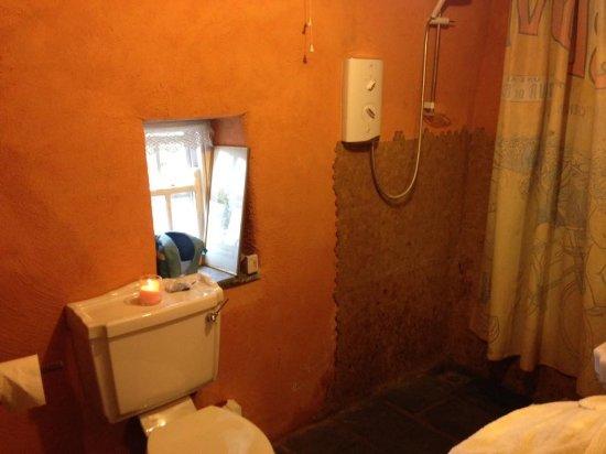 Ballacolla, Ireland: The shower
