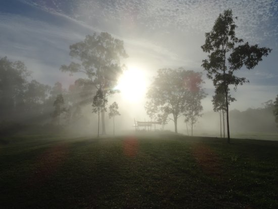 Julatten, Avustralya: Misty morning