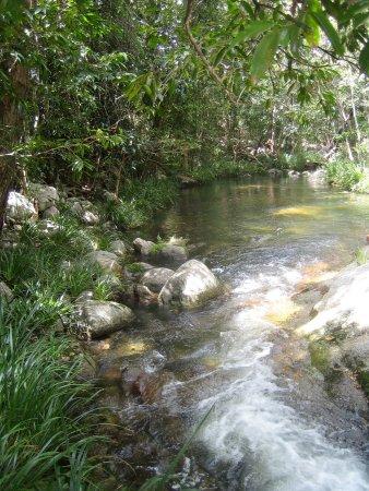 Julatten, Avustralya: Freshwater Creek