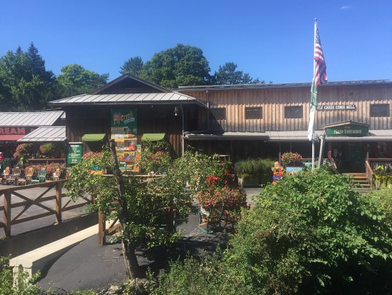 Fly Creek Cider Mill & Orchard: photo8.jpg