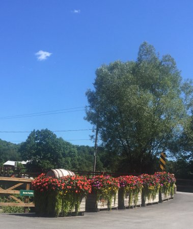 Fly Creek Cider Mill & Orchard: photo9.jpg