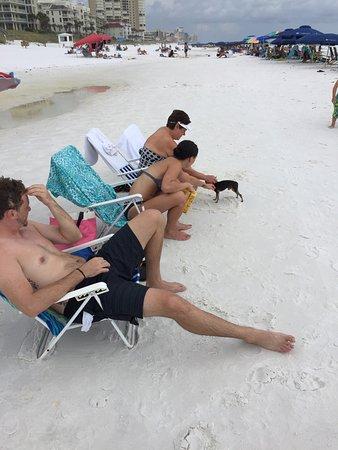 Destin West Beach and Bay Resort: Making friends on the beach in Destin Florida