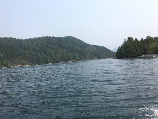Campbell River, Kanada: photo4.jpg