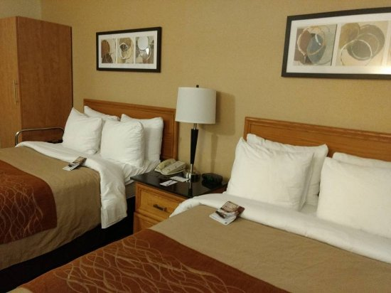 Comfort Inn East: Decent and comfy room with enough pillows and warm blanket. Good aircondition unit.