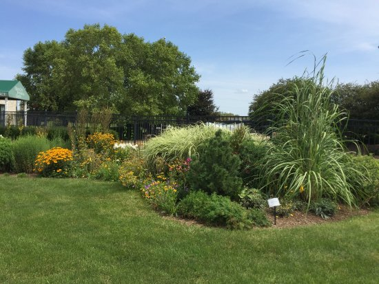 Rock Island, IL: Outdoor garden