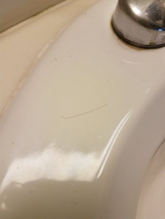 South Beloit, Ιλινόις: A small sampling of hairs left in our sink and faucet grime