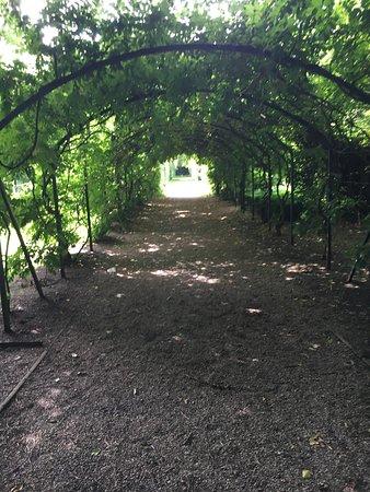 Walkden Gardens : photo6.jpg