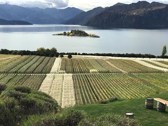 New Zealand Impressions