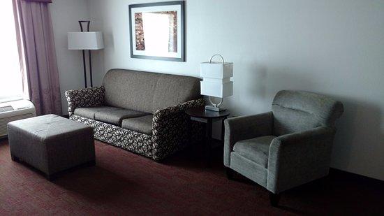 Hampton Inn and Suites Detroit/Airport-Romulus Photo