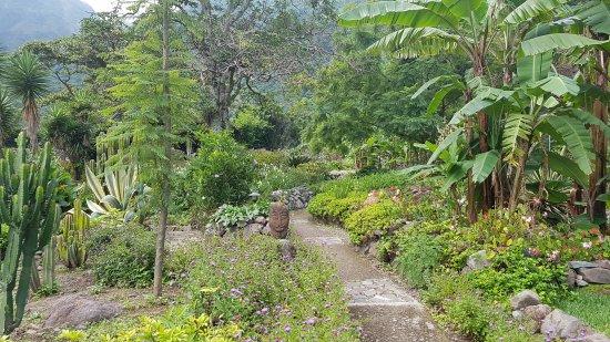 Jaibalito, Guatemala: Vulcano Lodge