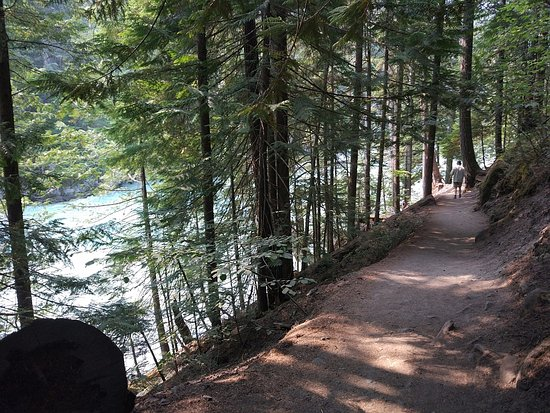 Pemberton, Canada: Trail to Nairn Falls above the Green River
