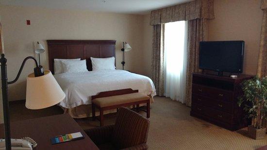 hampton inn suites burlington wa omd men och. Black Bedroom Furniture Sets. Home Design Ideas