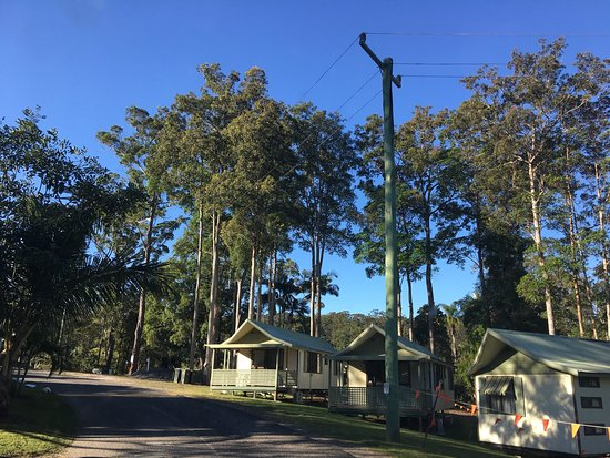 Forest Glen, Australia: photo9.jpg