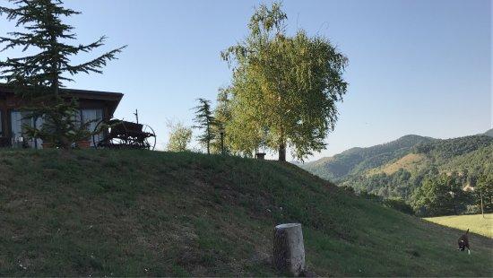 Costacciaro, Италия: photo6.jpg