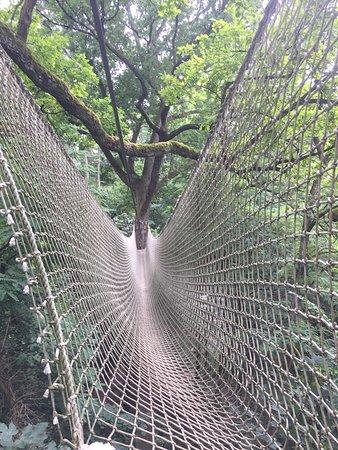 Yapluka Park
