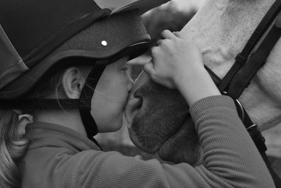 Branscombe, UK: East Devon Riding Academy