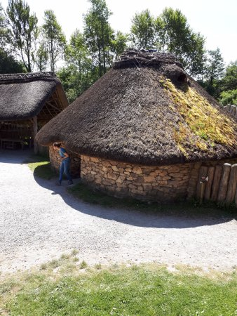 Irish National Heritage Park: One of the huts at the park