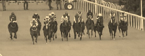 Newcastle Racecourse: Useful screens