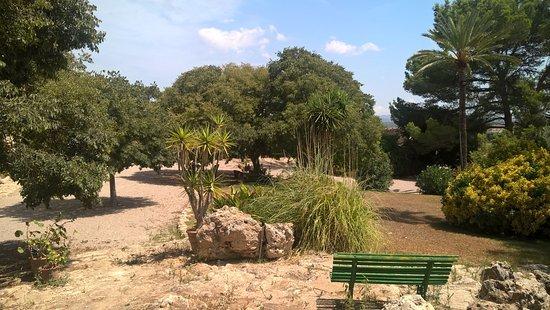Bilde fra Petra