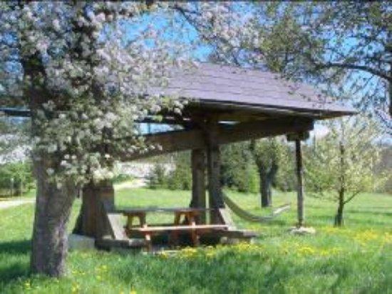 Pressbaum, النمسا: pressbaum im biosphärenpark wienerwald