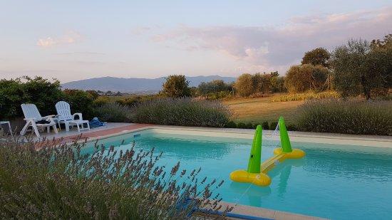 Marciano della Chiana, Italien: La piscine