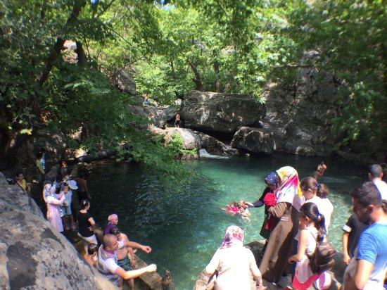 Altinoluk, Turkey: Hasanboğuldu tarafı