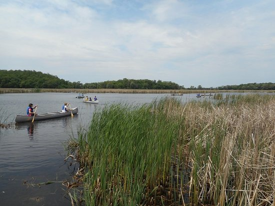 Spicer, MN: Canoeing at Prarie Woods